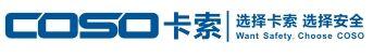 东莞市卡索电子科技有限公司
